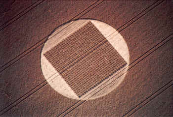 "The Etchilhampton Grid, or ""Boustrophedon Grid"". 8/9 August 97, Etchilhampton, Wilts, UK. C. 1997. Steve Alexander"